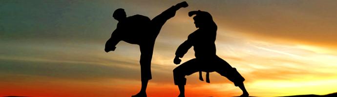 bidrag kampsport